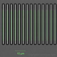 Wafer Inspektion: Line/Space Strukturen von kleiner 1µ